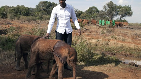 Manchester City and Ivory Coast midfielder Yaya Toure visits baby elephants at the David Sheldrick Wildlife Trust elephant orphanage, to highlight the fight against the illegal ivory trade after he was declared a United Nations Environment Programme (UNEP) Goodwill Ambassador, at the Nairobi National Park in Kenya Tuesday, Oct. 29, 2013. FIFA will seek assurances from Russia's 2018 World Cup leaders that they are taking action to eradicate racism from matches after the problem was highlighted during a globally-televised Champions League match on Wednesday last week when CSKA Moscow fans hurled abuse at Manchester City's Toure. (AP Photo/Sayyid Azim)